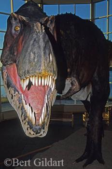 Fort Peck Dinosaur