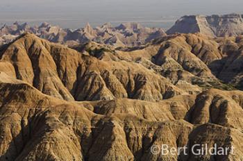 Greatest repository of the Oligocene