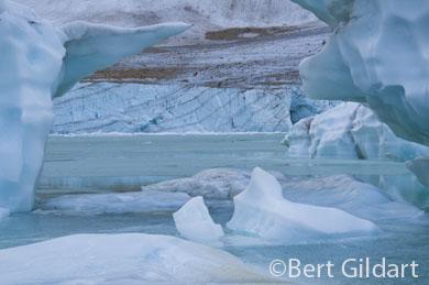 Derivatives of Cavell Glacier