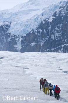 Exploring Athabascan Glacier