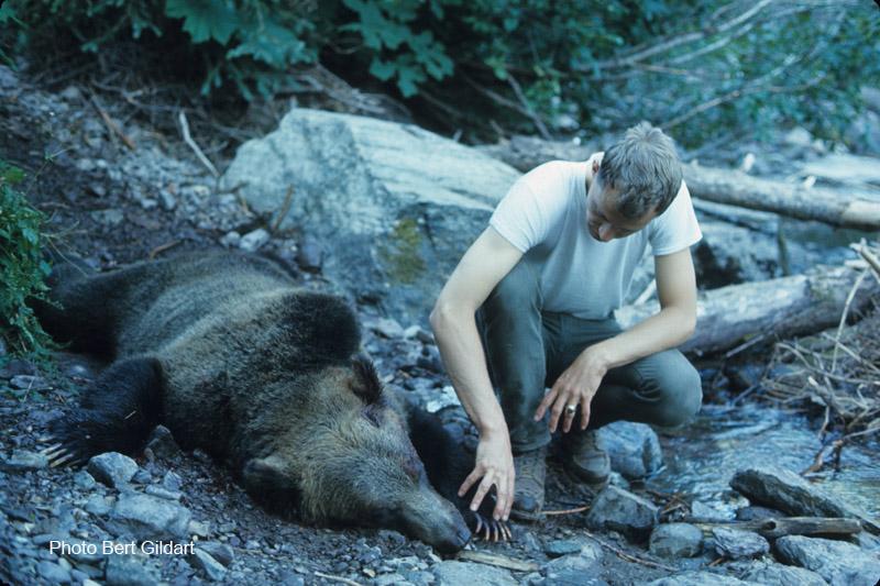 Bear&Leonard